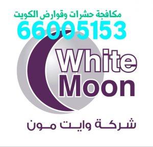 شركة مكافحة حشرات القصور 55306090 بالكويت