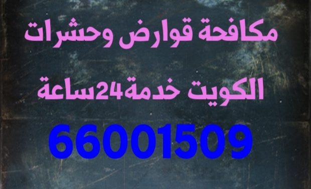 مكافحه قوارض ابو الحليفه 66005153
