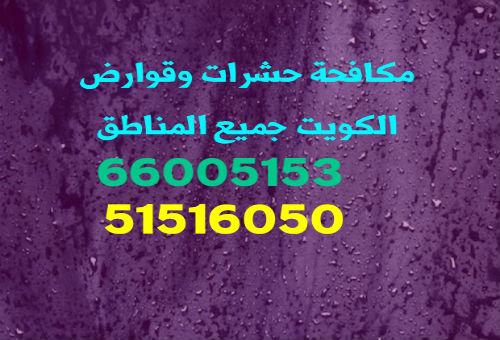 مكافحة حشرات الفحيحيل 66005153